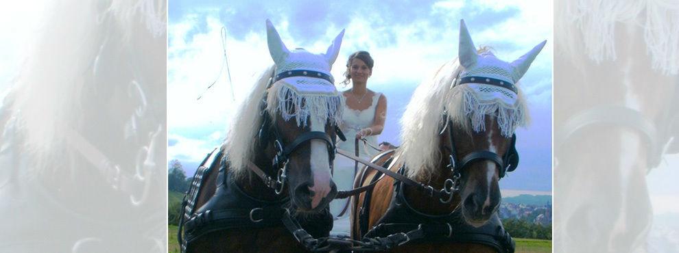 Beispiel: Braut mit Kutschpferden, Foto: Kutschfahrten Behringer.