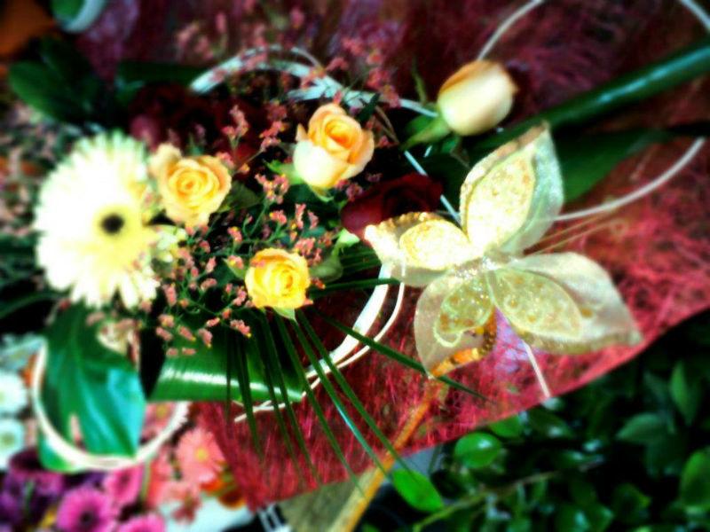 Foto: O Cantinho da Flor