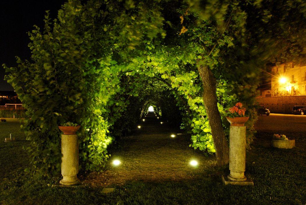 Il tunnel dei Noccioli di Notte