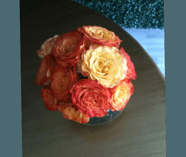 Le Fleuriste, florería en Jalisco