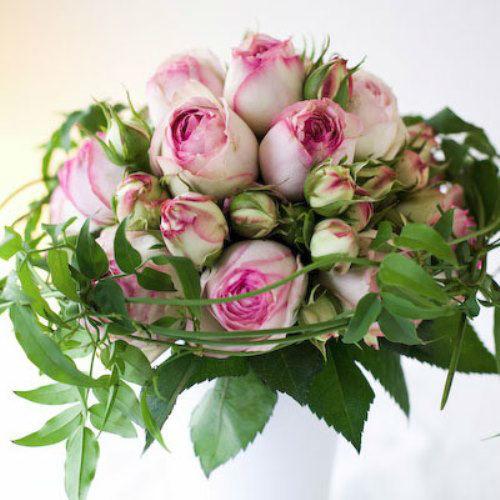 Beispiel: Rosen Zartrosa, Foto: hochzeitsrosen.ch.