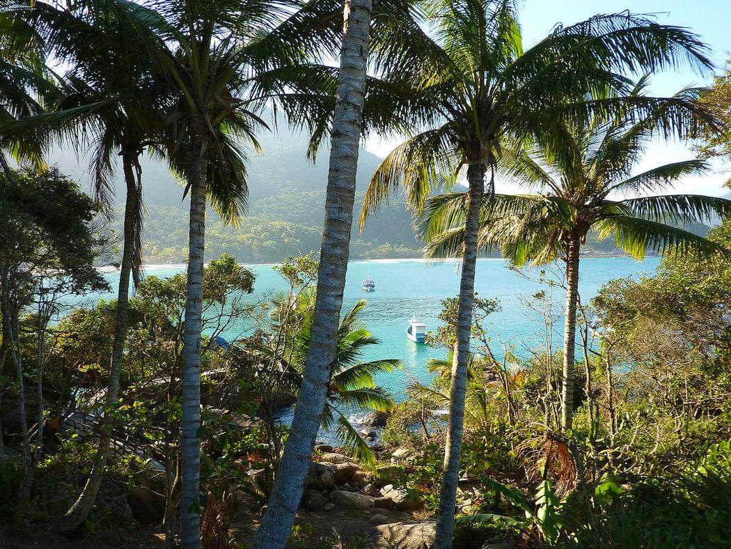 Ilha Grande, à seulement quelques heures en voiture de Rio, découvrez une ile paradisiaque où le farniente est l'activité principale. Vous pourrez également y pratiquer la plongée et la randonnée à la rencontre de la faune et la flore de la forêt tropicale.