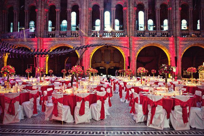 National History Museum - Hintze Hall - Marianne Taylor Photography