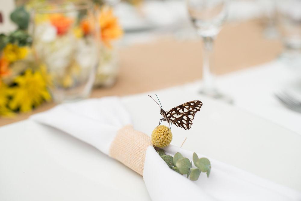 Una mariposa llega como augurio de buena suerte a la boda de Liza y Oscar Hacienda Montecano