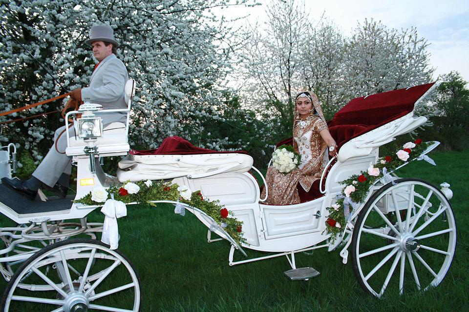 Beispiel: Hochzeitskutschen, Foto: Kutschfahrten Frankfurt am Main.