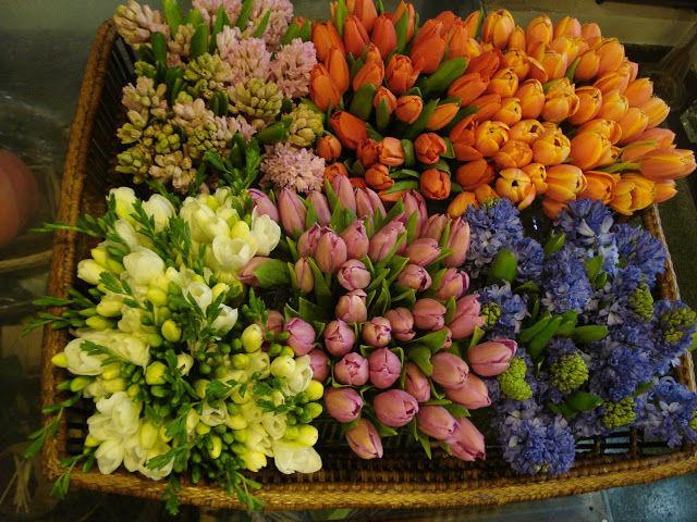 Variedad floral