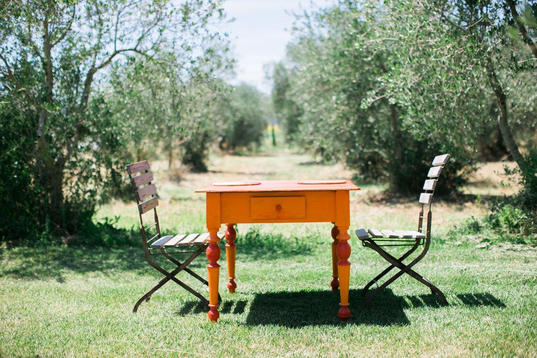 Pranzo nell'uliveta - Lunch in the Uliveta