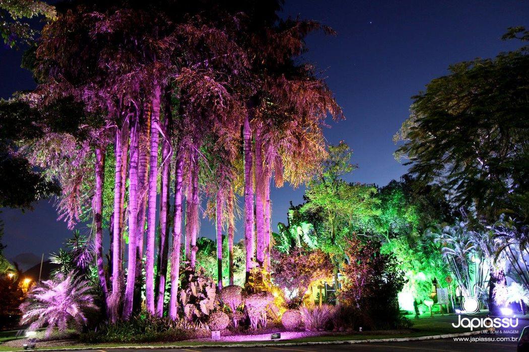 Jardim - Sociedade Hipica Brasileira