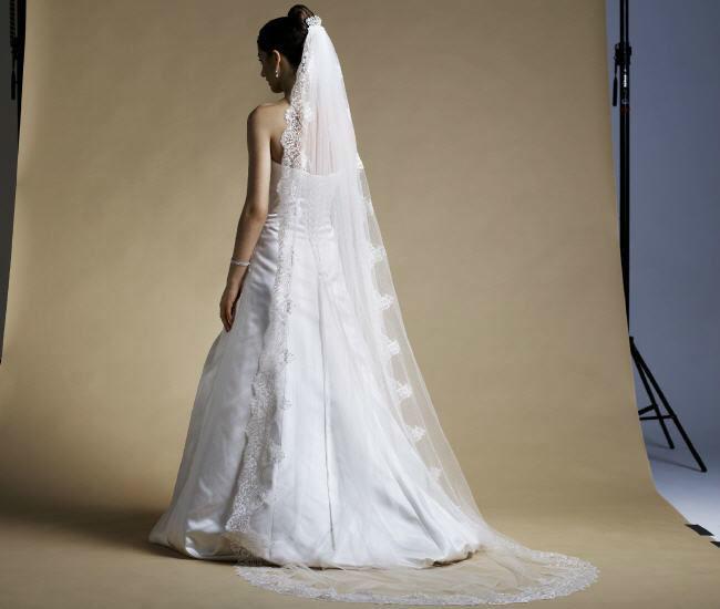 Beispiel: Fein gearbeitete Schleier, Foto: Magy's Brautmode.