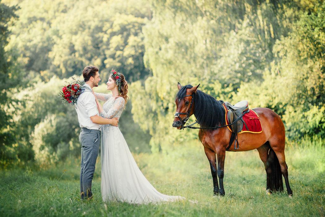 Прогулка с лошадкой