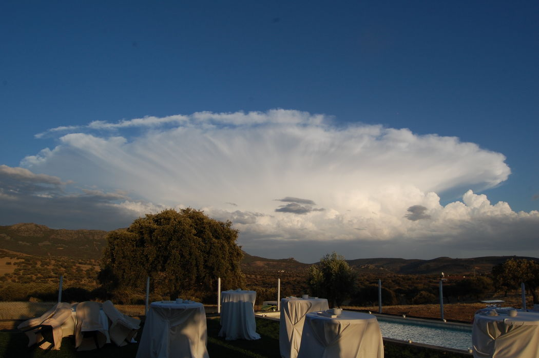 Vista nube