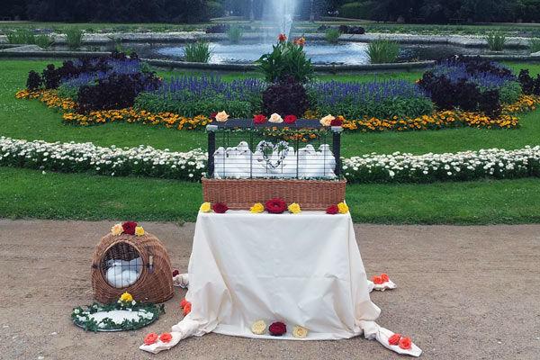 Beispiel: Ausgefallenes Hochzeitsgeschenk, Foto: Hochzeitstauben Dresden®.