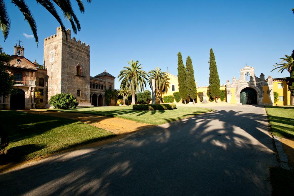 Castillo y puerta del Molino