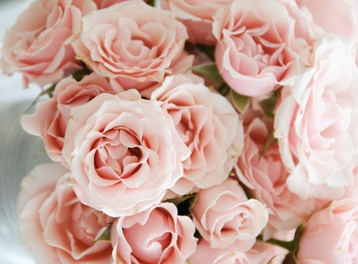 Addobbi floreali, ceti per il tuo giorno speciale.