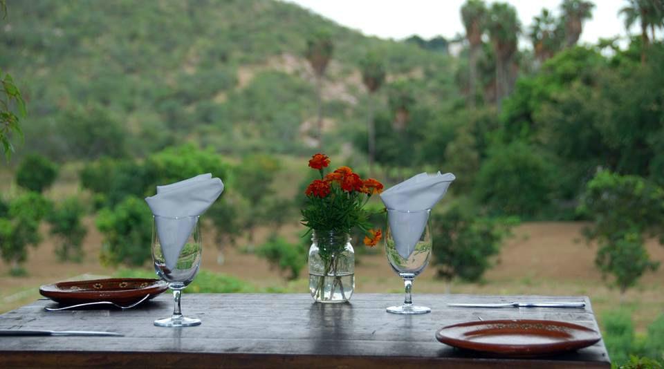 Huerta los Tamarindos en San José del Cabo (Baja California Sur)