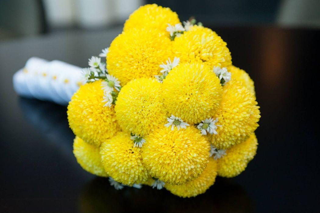 Maravilhosos amarelos outonais...