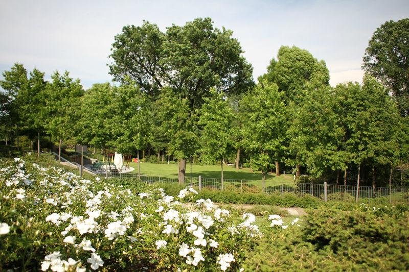 Parco in primavera al Ristorante Croce di Malta in Brianza vicino a Milano, Como, Svizzera