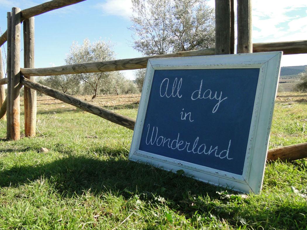 All day in Wonderland