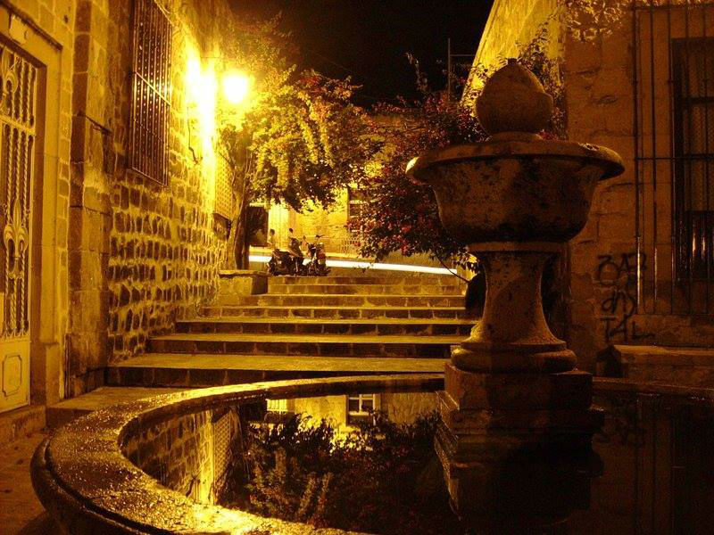 Hotel Árbol Grande en Morelia