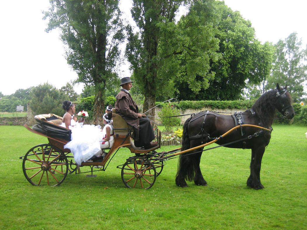 juin 2013 arrivée de la mariée en calèche