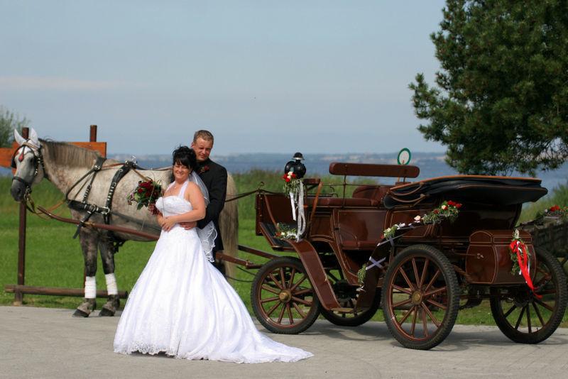 Beispiel: Vermittlung von Transportmitteln an Ihrem Hochzeitstag, Foto: Lucia Sposa.