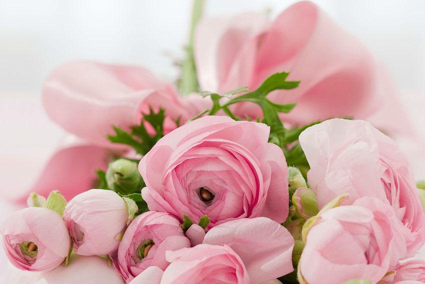 Beispiel: Blumendekoration, Foto: Gasthof Zur Linde.