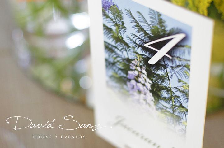 David Sanz Events