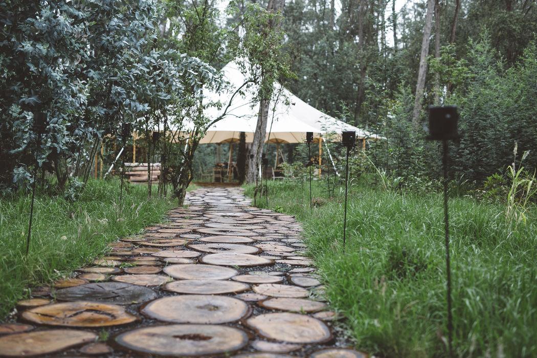 Matrimonio Hacienda Los Laureles Fotografía: La Central Fotografica