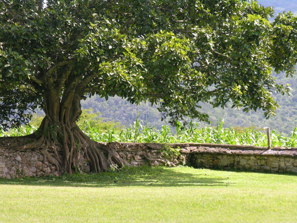 Hacienda, Parador Museo Santa María, La Trinitaria, Chiapas