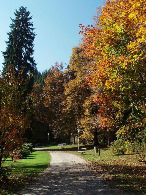 Beispiel: Natur pur, Foto: Warmbaderhof.