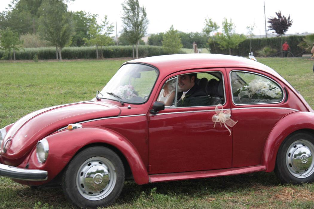 Alquiler Beetle antiguo.
