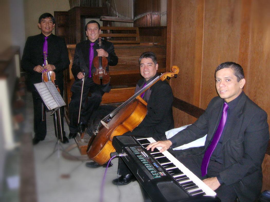 Algunos de nosotros: pianista, dos violines y cello.