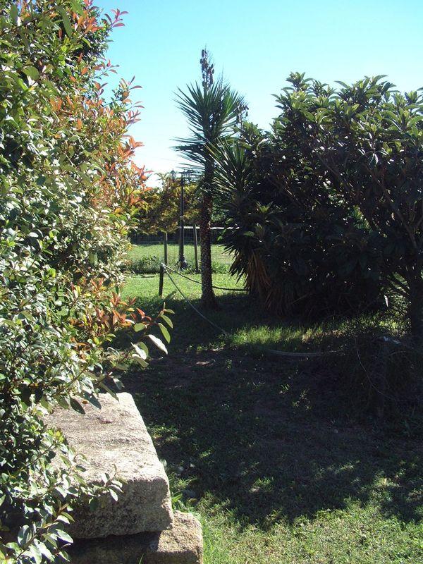 Vue sur le parc du Domaine de L'Ambre