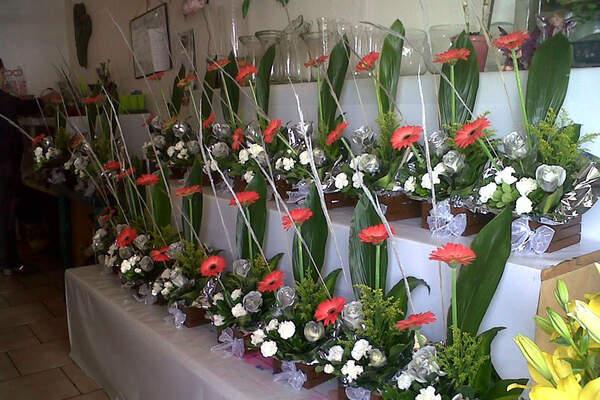 Floreria-Happy Flowers