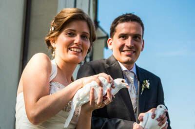 Hochzeitstauben