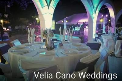 Velia Cano
