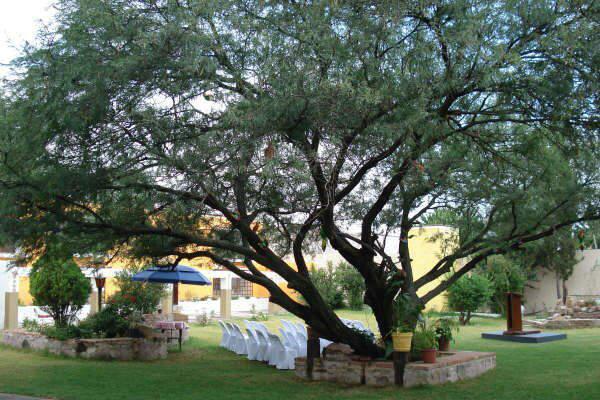 Fiesta americana aguascalientes bodas for Jardin quinta esmeralda aguascalientes