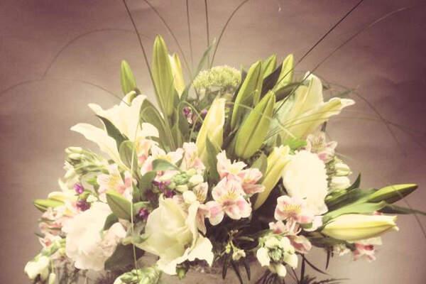 Baccara Floristas