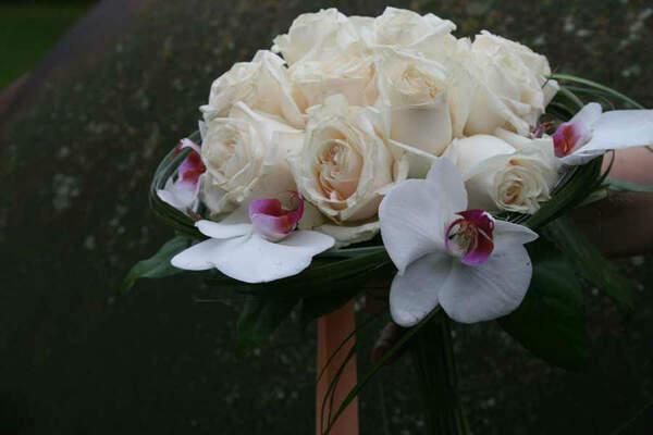Arte Floral Fresía