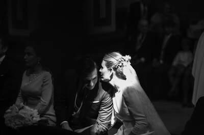 Música para camaleones Fotografía - Zaragoza