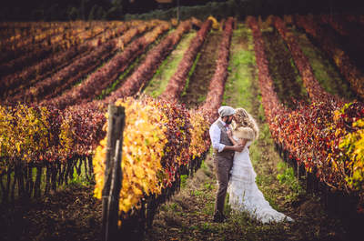 Maison D'eventi Wedding Planner