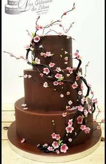 © Les gâteaux de Lilou