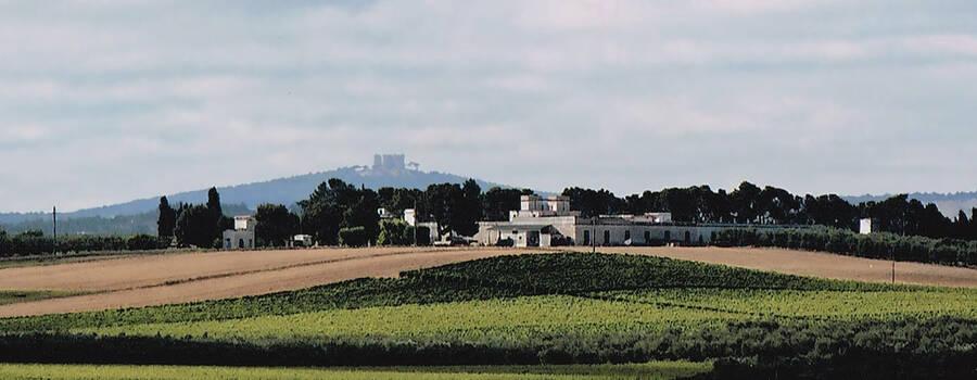 Masseria Terre di Traiano