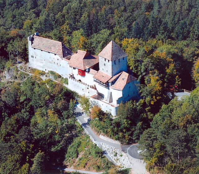 Beispiel: Luftaufnahme, Foto: Burg Hohenklingen.