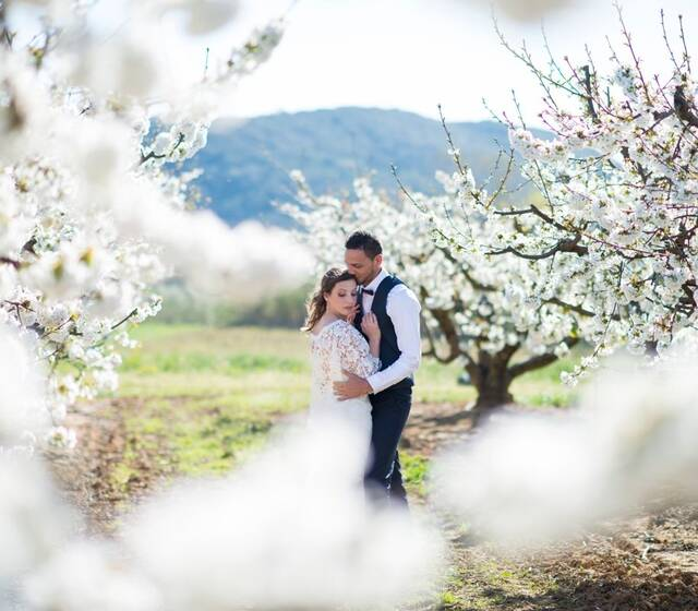Destination wedding in Frankrijk