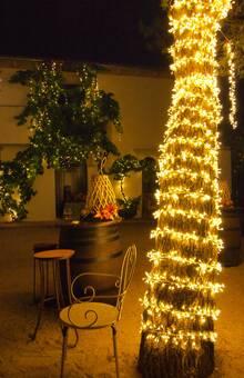 Iluminación parra y pino zona cóctel Boda M&I Hotel Rural Casar de Cáceres