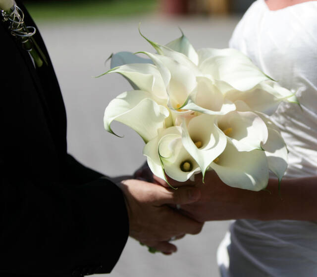 Foto: Braut und Bräutigam