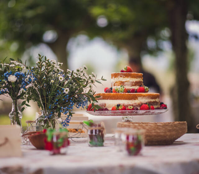 Carla Valladares Wedding & Event Planner