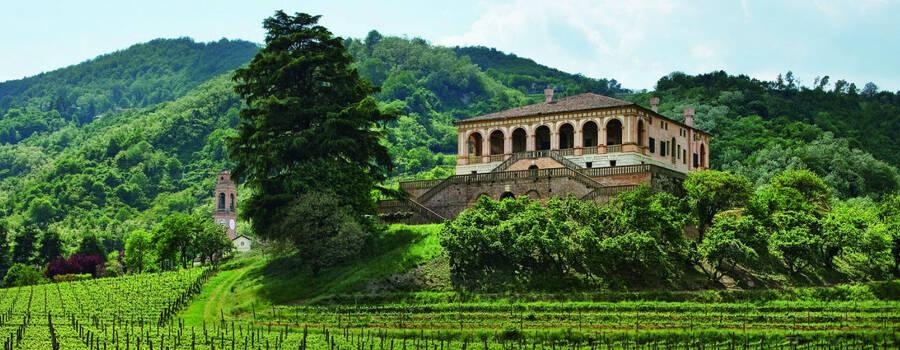 Villa dei Vescovi