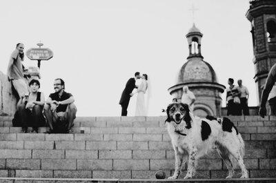 Sevilla tiene un color especial: la boda de Vanessa y Pancho